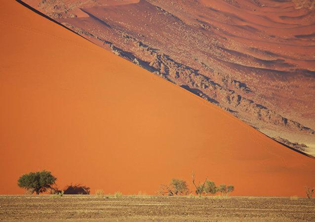 Dans le Namib