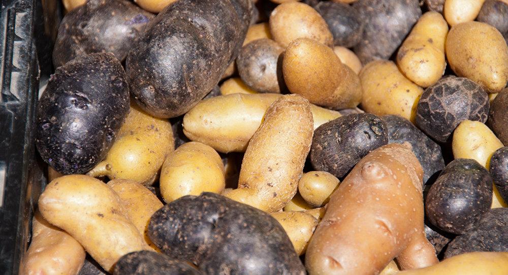 Hong-Kong : Une grenade découverte dans des pommes de terre françaises