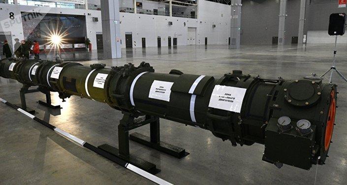 Le missile 9M729 exposé aux attachés militaires, archives