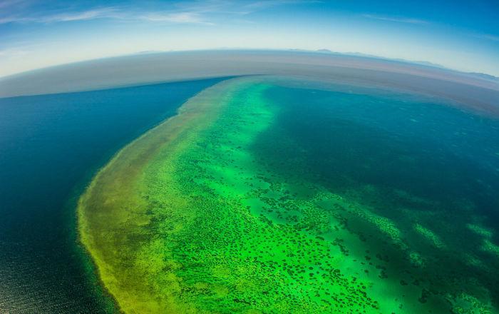 La Grande Barrière de corail menacée de disparition