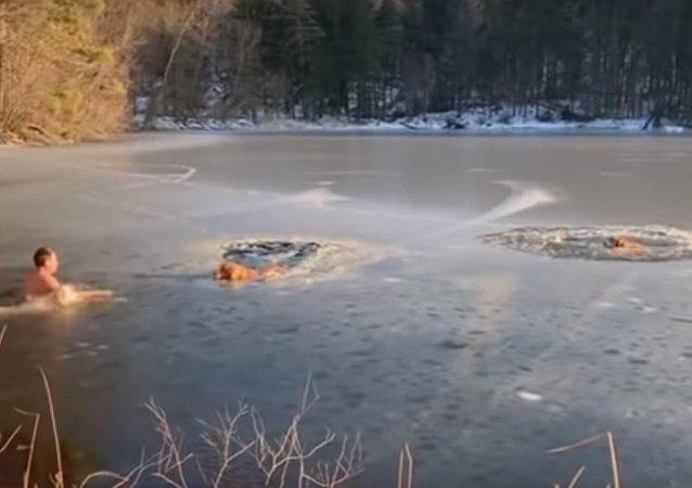 Un habitant de New York sauve deux chiens d'un lac gelé