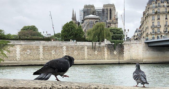 La cathédrale Notre-Dame de Paris après l'incendie, en avril 2019
