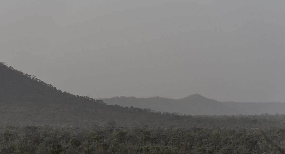 le parc national de la Pendjari dans le nord du Bénin