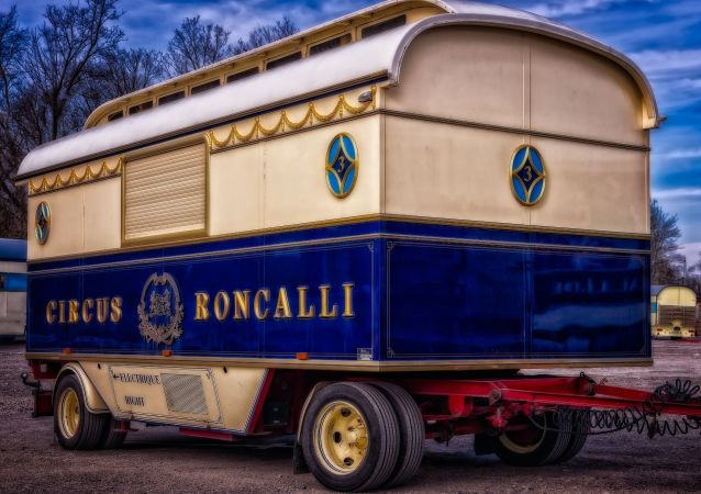Le cirque Roncalli (image d'illustration)
