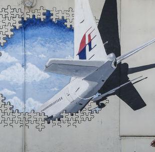Image du vol MH370