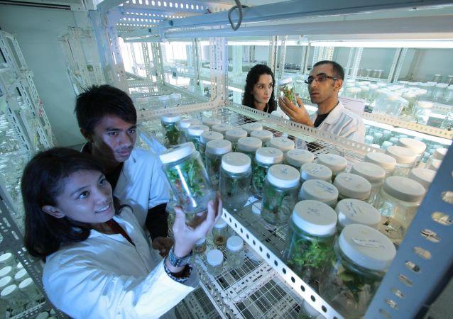 Des scientifiques