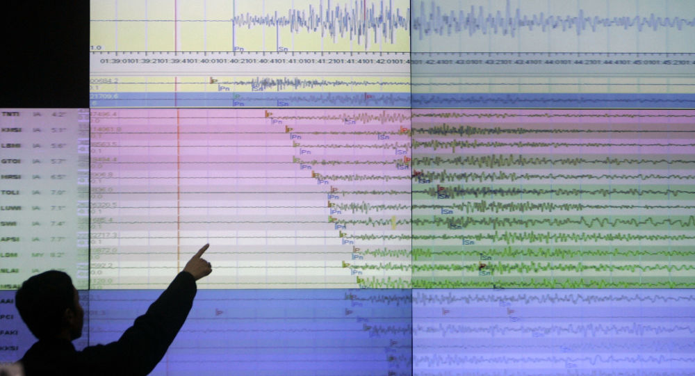 A geologist looks at a screen showing the seismograph reading of the powerful earthquake