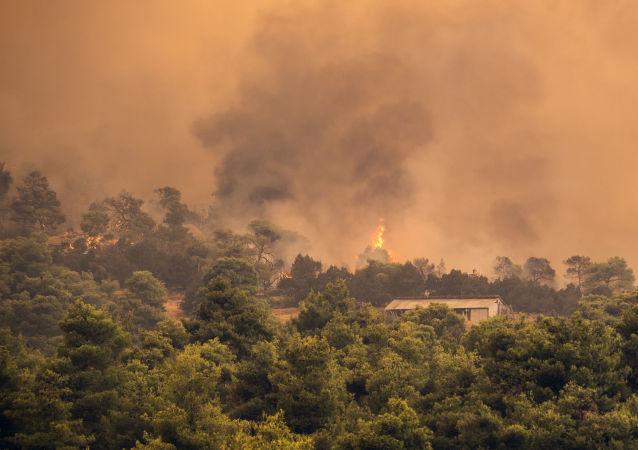 Incendies sur l'île grecque d'Eubée