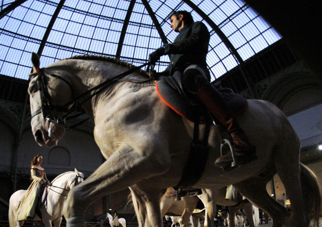 Un spectacle equestre (photo d'archives)