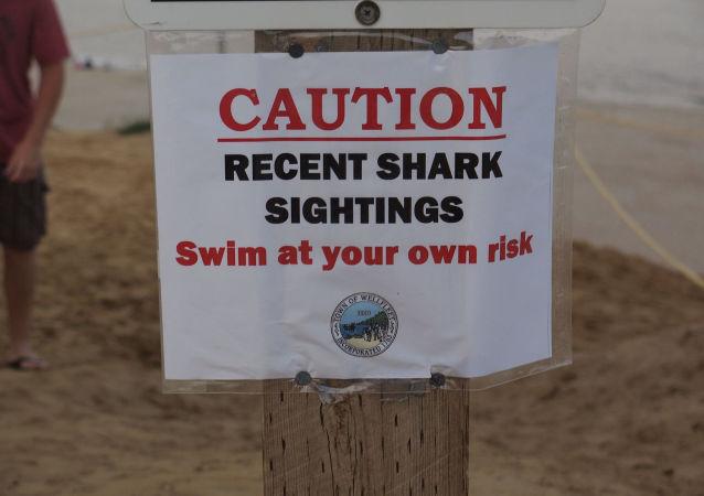 Un avertissement sur la présence de requins au cap Cod