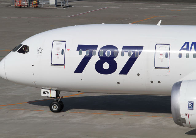 Un Boeing 787 Dreamliner (archive photo)