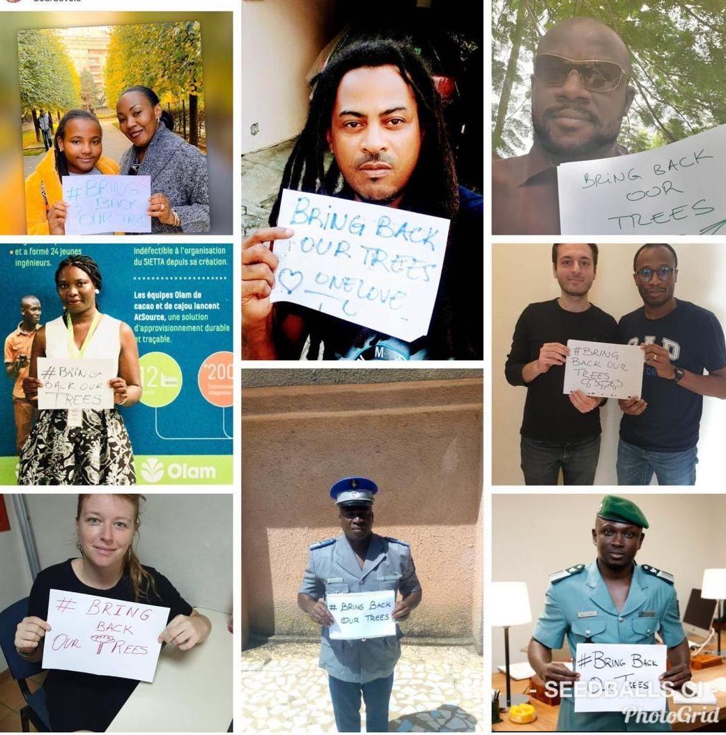 Un florilège de participants à la campagne #BringBackOurTrees