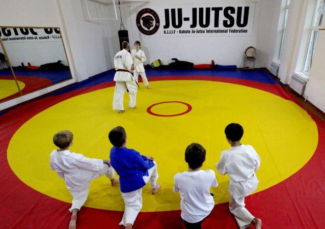 Jiu-jitsu / image d'illustration