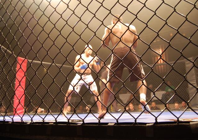 Un combat de MMA (image d'illustration)