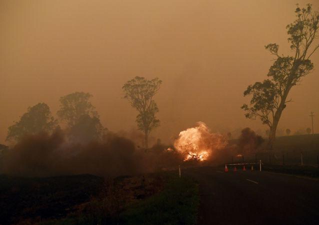 les incendies de forêts en Australie, le 5 janvier 2020