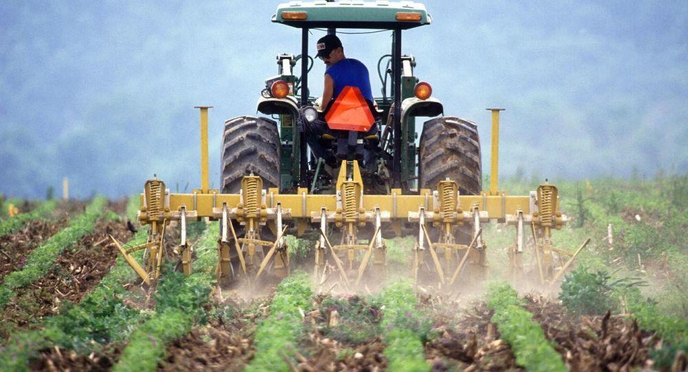 Certains agriculteurs «gagnent 350 euros par mois et vivent bien», assure un député LREM - vidéo