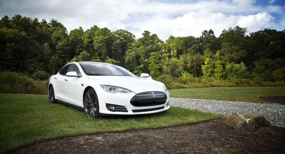 Une Tesla en mode automatique évite un sanglier en Belgique: Elon Musk commente - vidéo