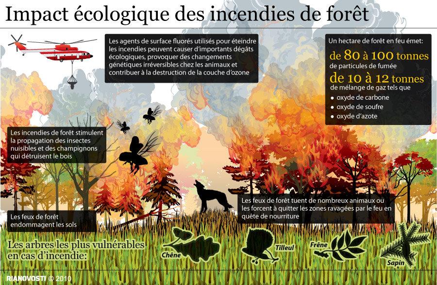Impact cologique des incendies de for t sputnik france - Consequences de la destruction de la couche d ozone ...