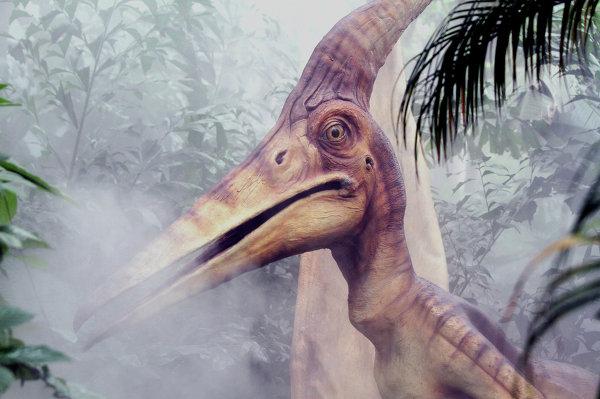 Динозавр в ChimeLong Safari Park, Китай