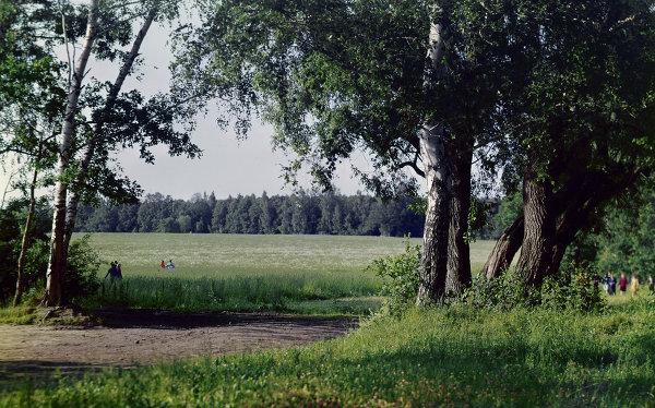 Музей-усадьба Л.Н. Толстого Ясная Поляна