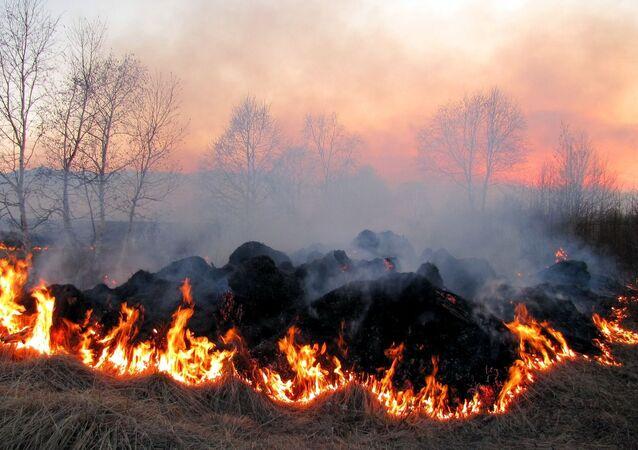 Un feu de champ. Image d'illustration