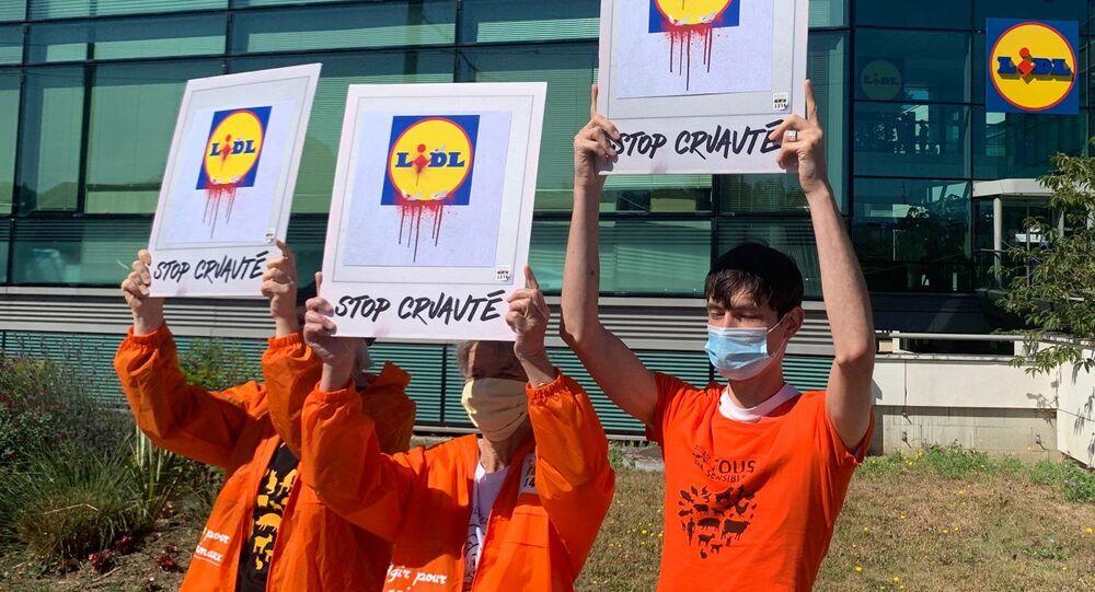 Les activistes de L214, une association de protection animale, ont manifesté à Rungis face au siège social du distributeur Lidl