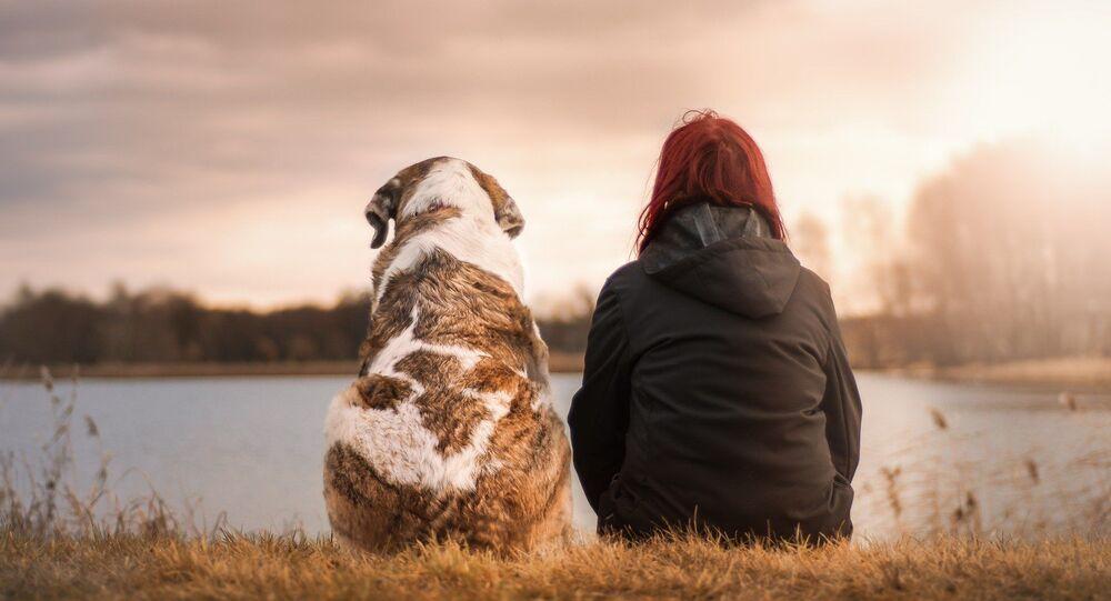 Un chien et son humain