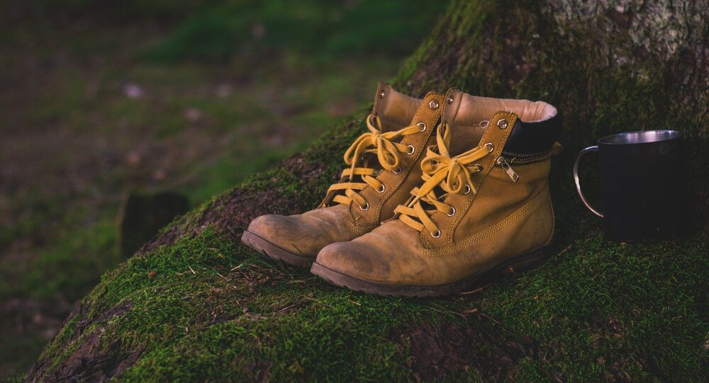 Des chaussures (image d'illustration )
