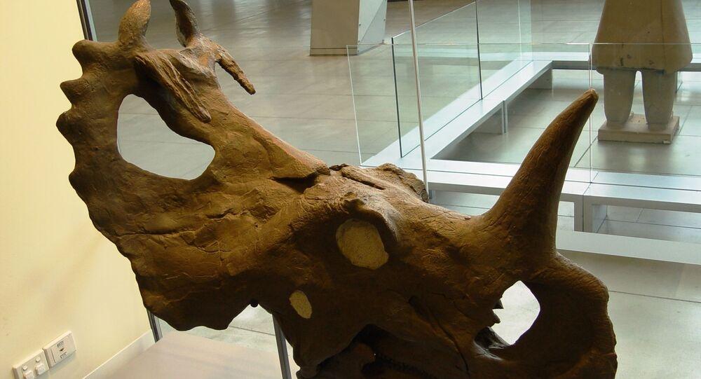 Un premier diagnostic de cancer chez un dinosaure, selon des chercheurs canadiens
