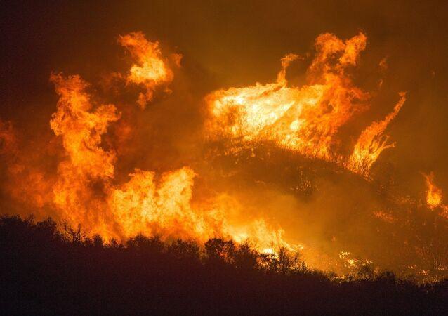 Un incendie de forêt