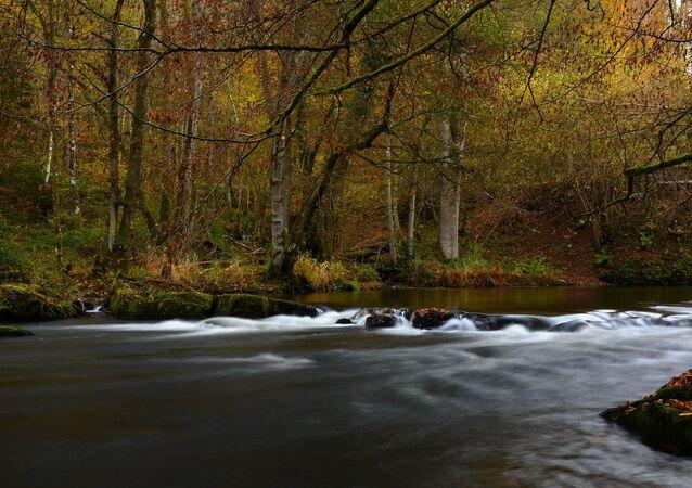 Une rivière (image d'illustration)