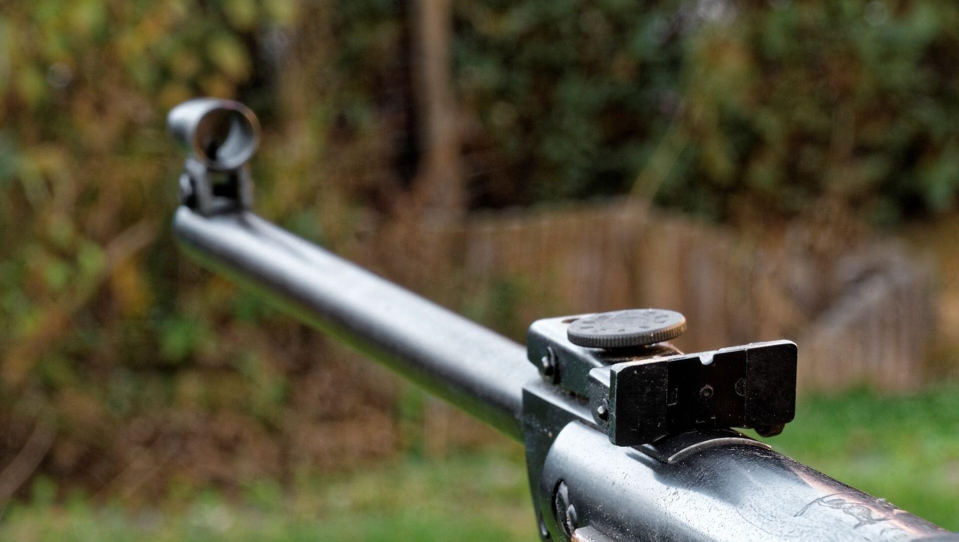 Une arme à feu - Sputnik France, 1920, 13.03.2021
