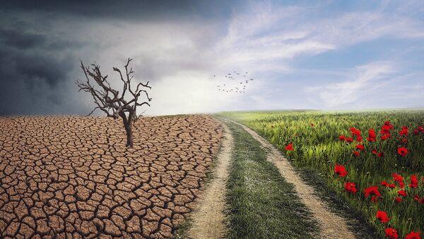 Changement climatique - Sputnik France