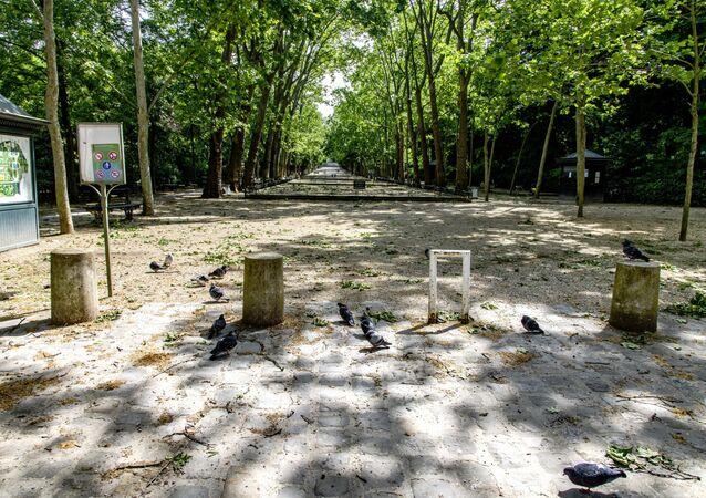 Jardin du Luxembourg. Paris après le confinement
