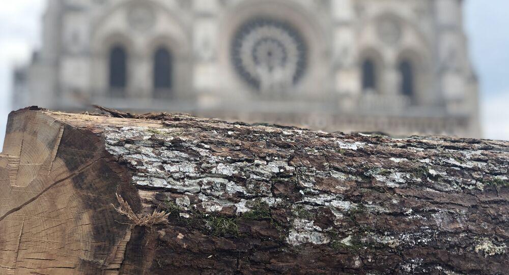 La charpente de Notre-Dame-de-Paris sera reconstruite à l'identique, en chêne