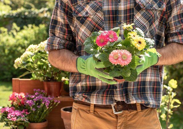 Un jardinier (image d'illustration)