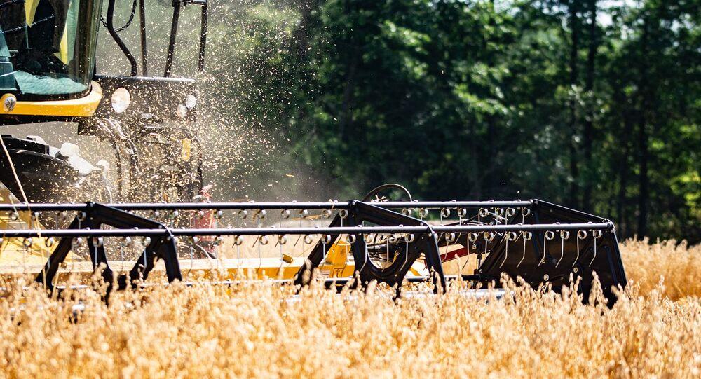Des travaux agricoles