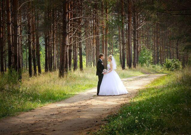 Mariage. Couple. Bois. Imafe d'illustration