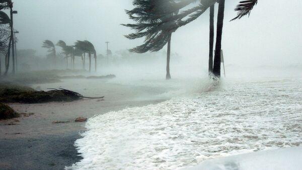 Ouragan (image d'illustration) - Sputnik France
