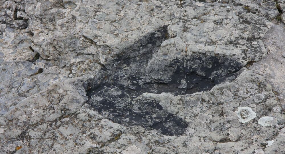 Une trace de dinosaure (image d'illustration)