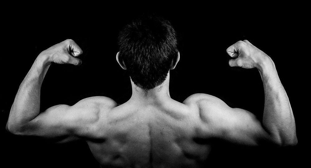 Muscles, image d'illustration