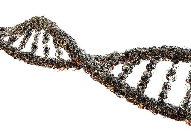Un gène (image d'illustration)