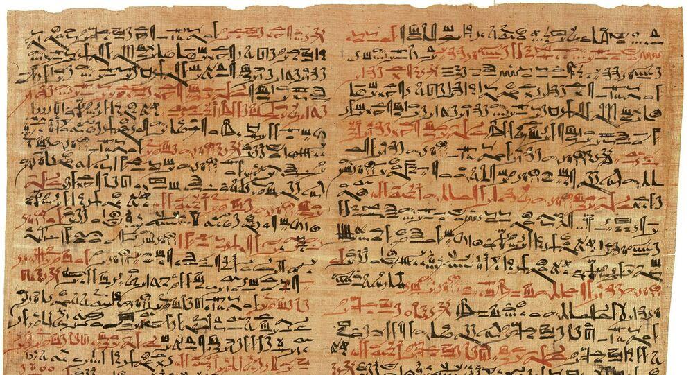 Un papyrus (image d'illustration)