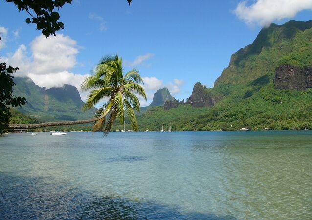 Polynésie française. Vue de la baie de Cook sur Moorea