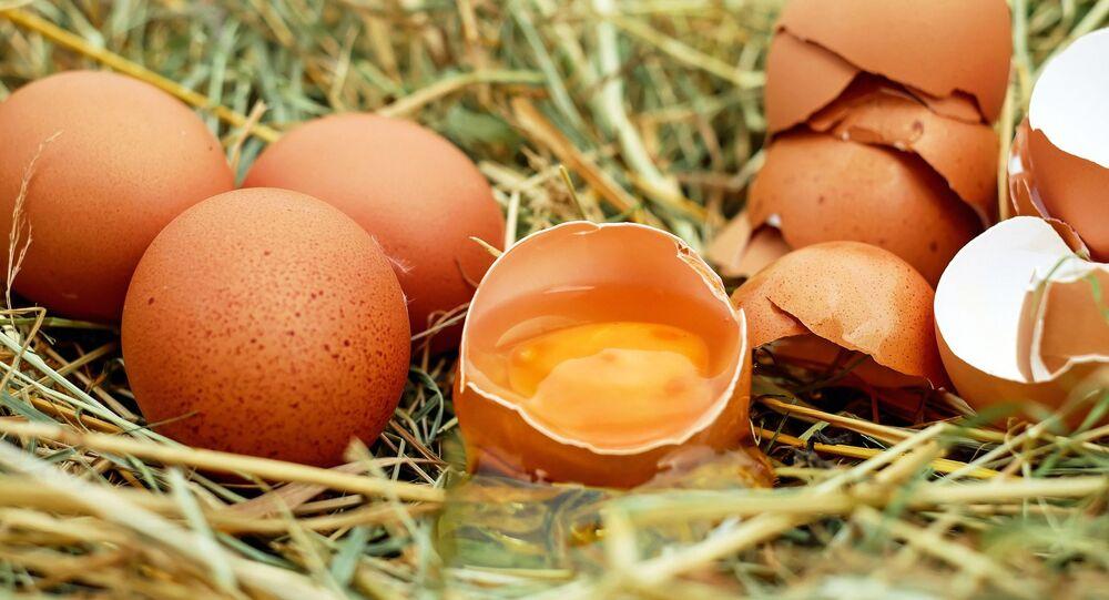 Jaune d'œuf
