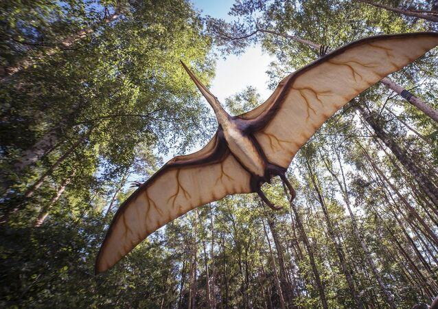 Un ptérosaure