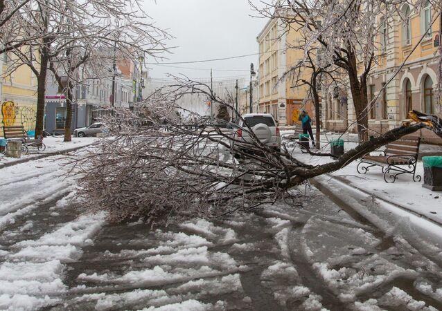Les conséquences d'une pluie verglaçante à Vladivostok, le 19 novembre