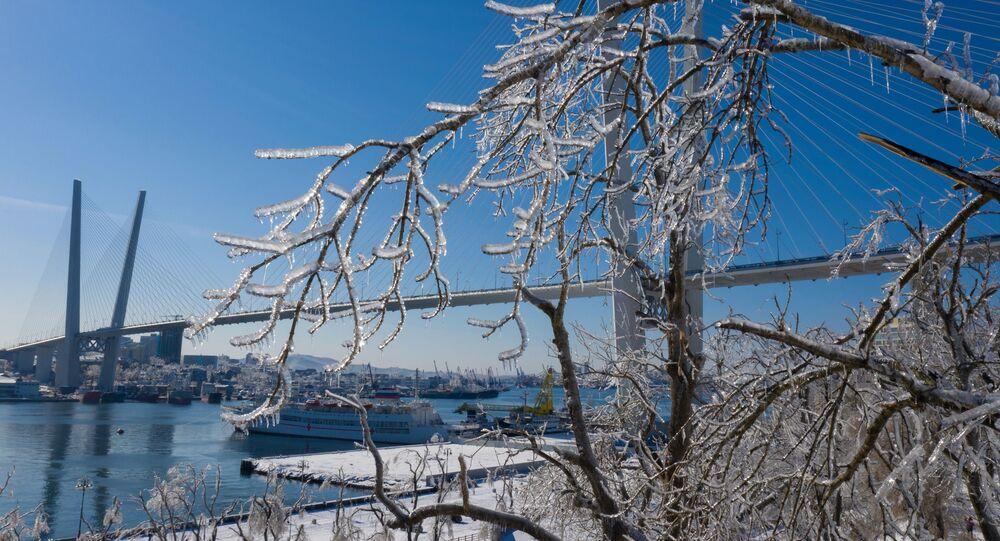 Le pont à haubans de l'île Rousski, le 21 novembre