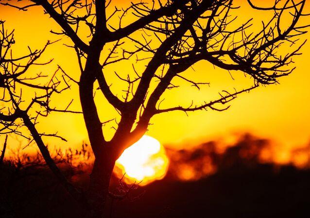 Sunset, Kruger National Park, South Africa