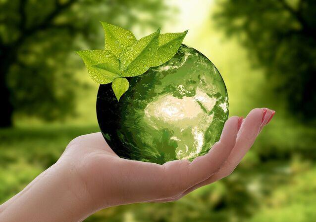 Ecologie (image d'illustration)